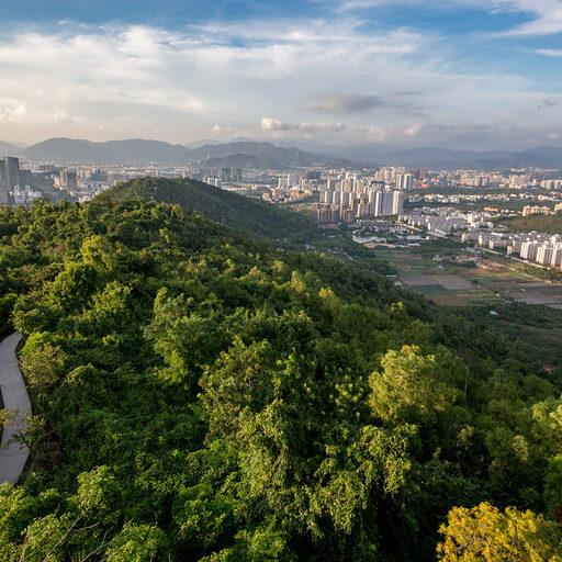 Санья: Городской парк и Дома-деревья