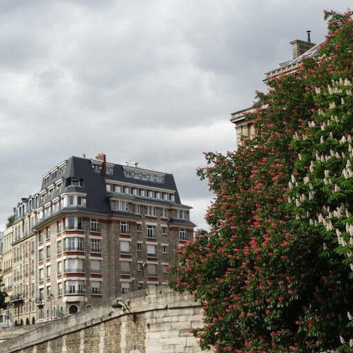 Над замирающим Парижем Плывет весна… М. Волошин
